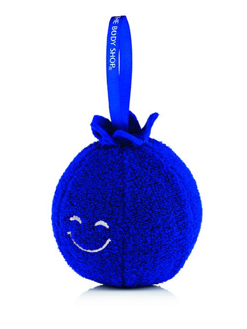 Blueberry Sponge1